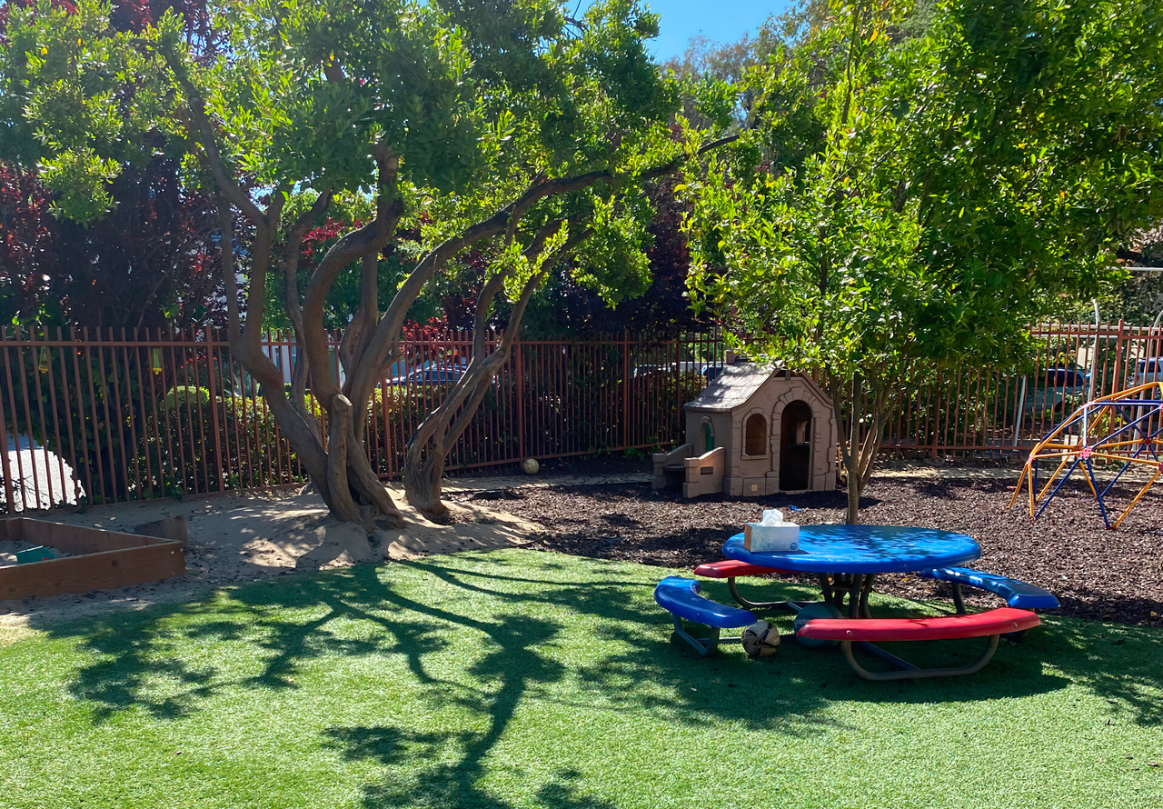 Outdoor Play For Physical Activity & Fun In Nature